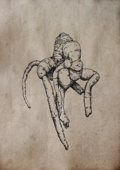 Mandrake III