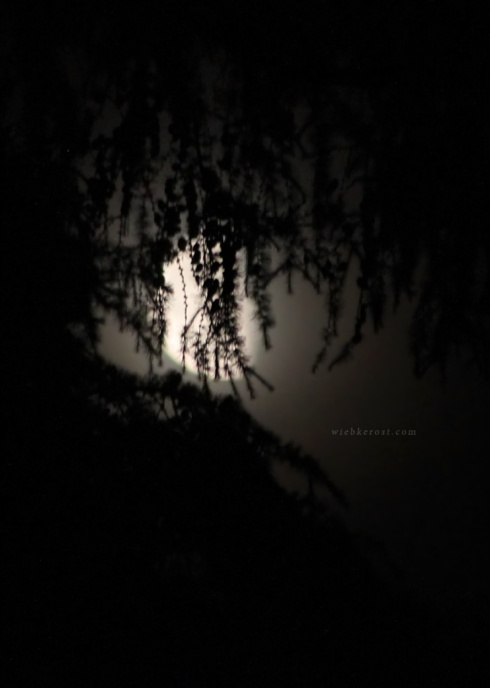 June Waning Moon, 2015