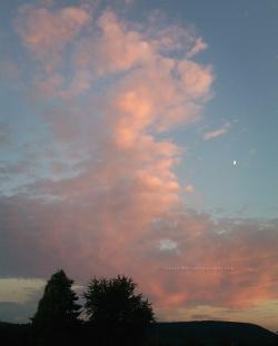 Evening sky, Aug. 10 2016