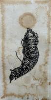 Mandrake 'Mermaid II', India ink, 2017