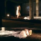 Derevo performance, Ostrale Opening, 2017