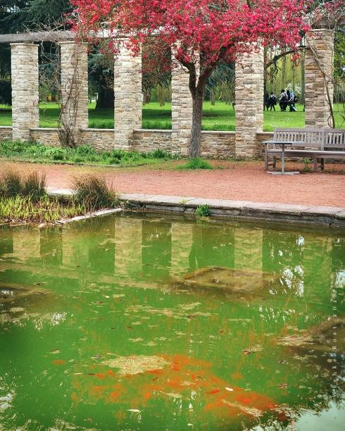 Japanischer Garten Nordpark Düsseldorf Wiebke Rost