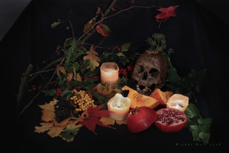 Autumn Still Life '18